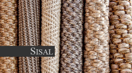 Welcome to sisal by source mondial